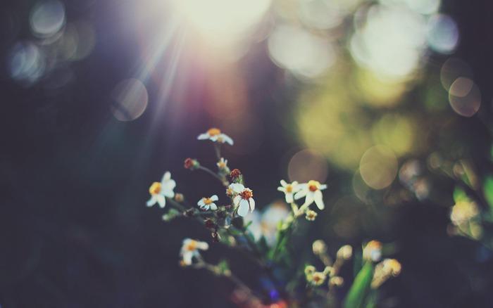 爱就像一个瓶子,溢满了我们之间的幸福