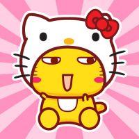 经典猫猫之哈咪猫篇